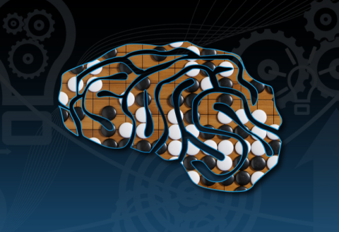 Go & Brain (1): What does your brain do while you play go?