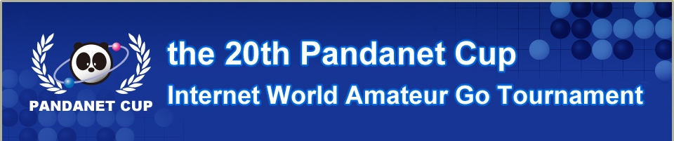The 20th Pandanet Cup, Internet World Amateur Go Tournament